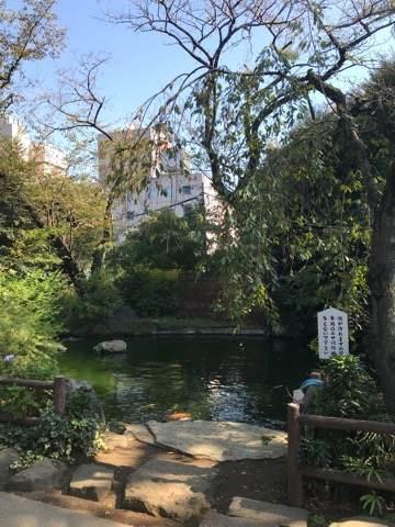 港区・愛宕神社