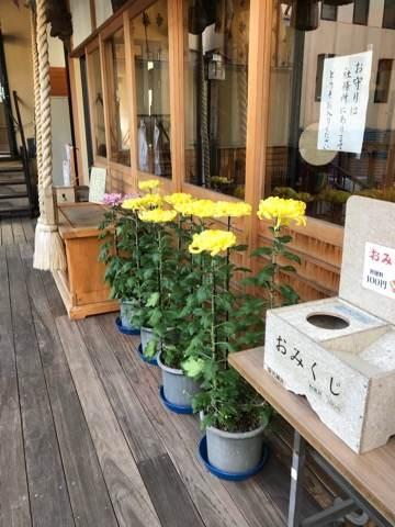 横浜・菊名神社