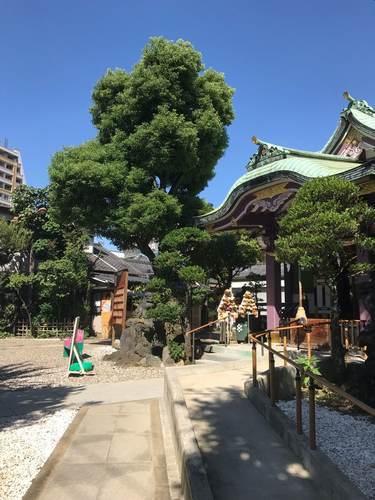 高木神社・御朱印
