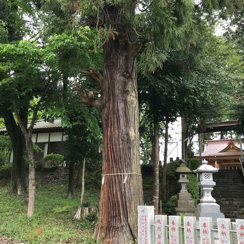 糀谷八幡神社