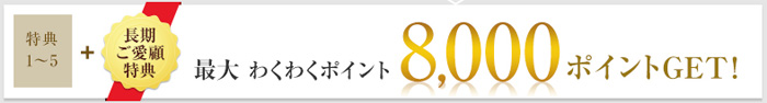 f:id:kenbou89:20170208001814j:plain