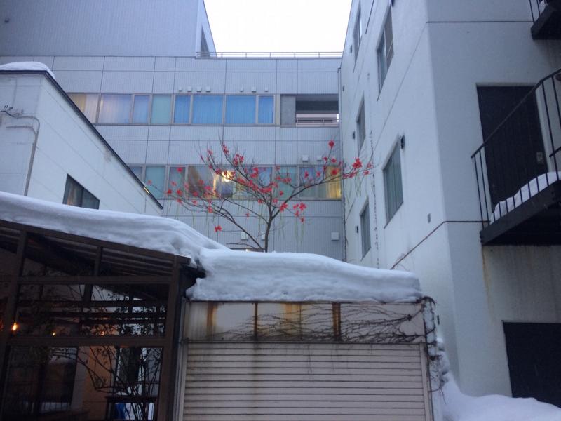 f:id:kenbun:20170217122001j:image:w640