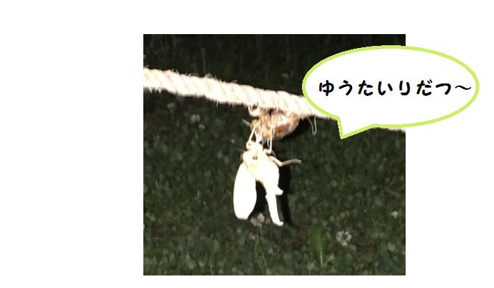 f:id:kenbunjuku:20170724213711p:plain