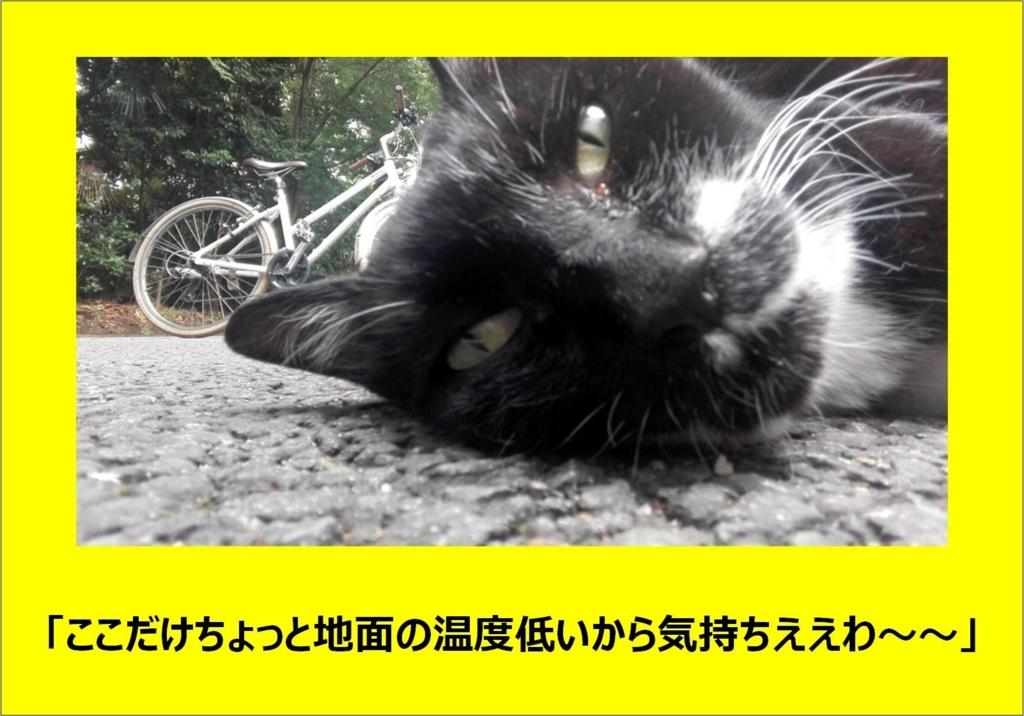 f:id:kenbunjuku:20170725202853j:plain