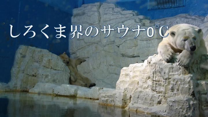 f:id:kenbunjuku:20170801214014j:plain
