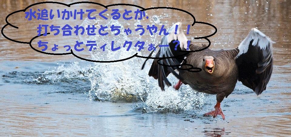 f:id:kenbunjuku:20170827221030j:plain