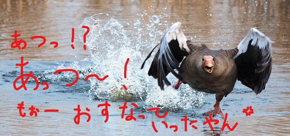 f:id:kenbunjuku:20170827223329j:plain