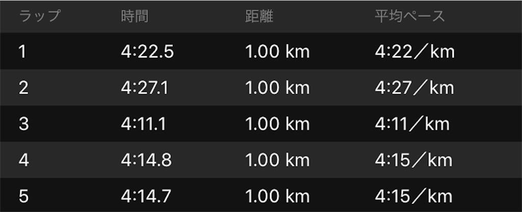 f:id:kenchan-run:20190414165102j:image