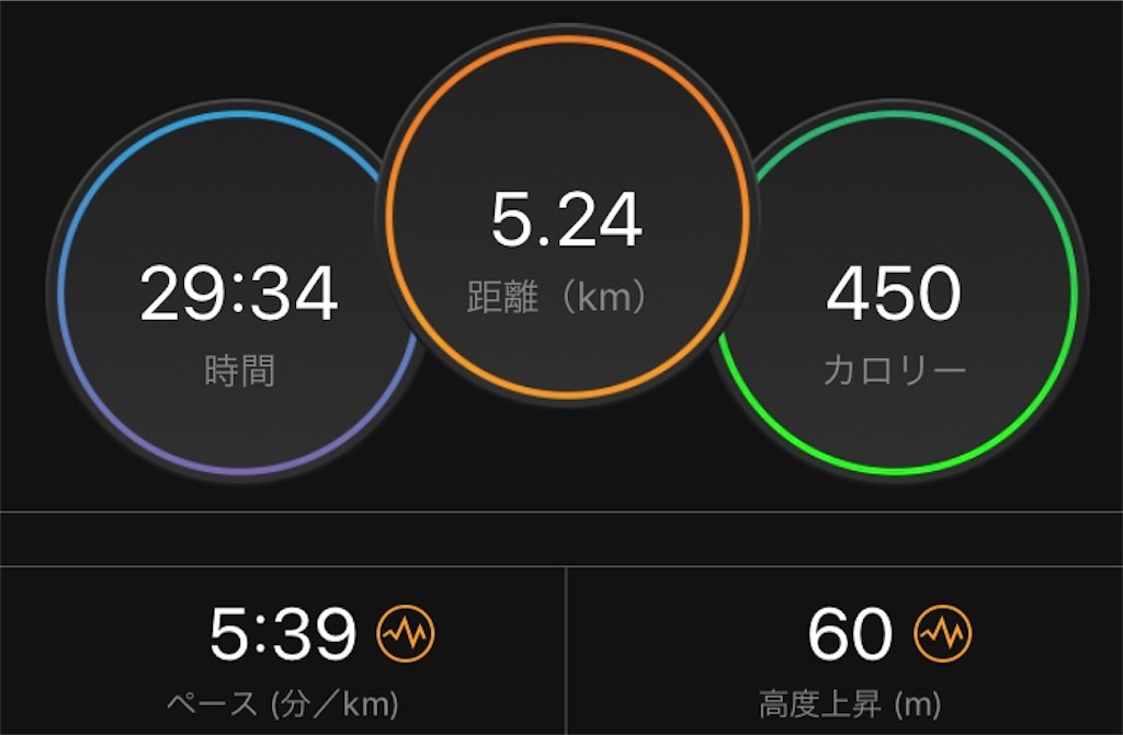 f:id:kenchan-run:20190501184642j:image