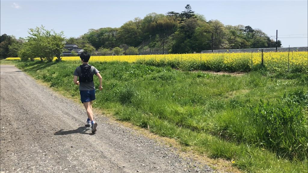 f:id:kenchan-run:20210505202527p:image