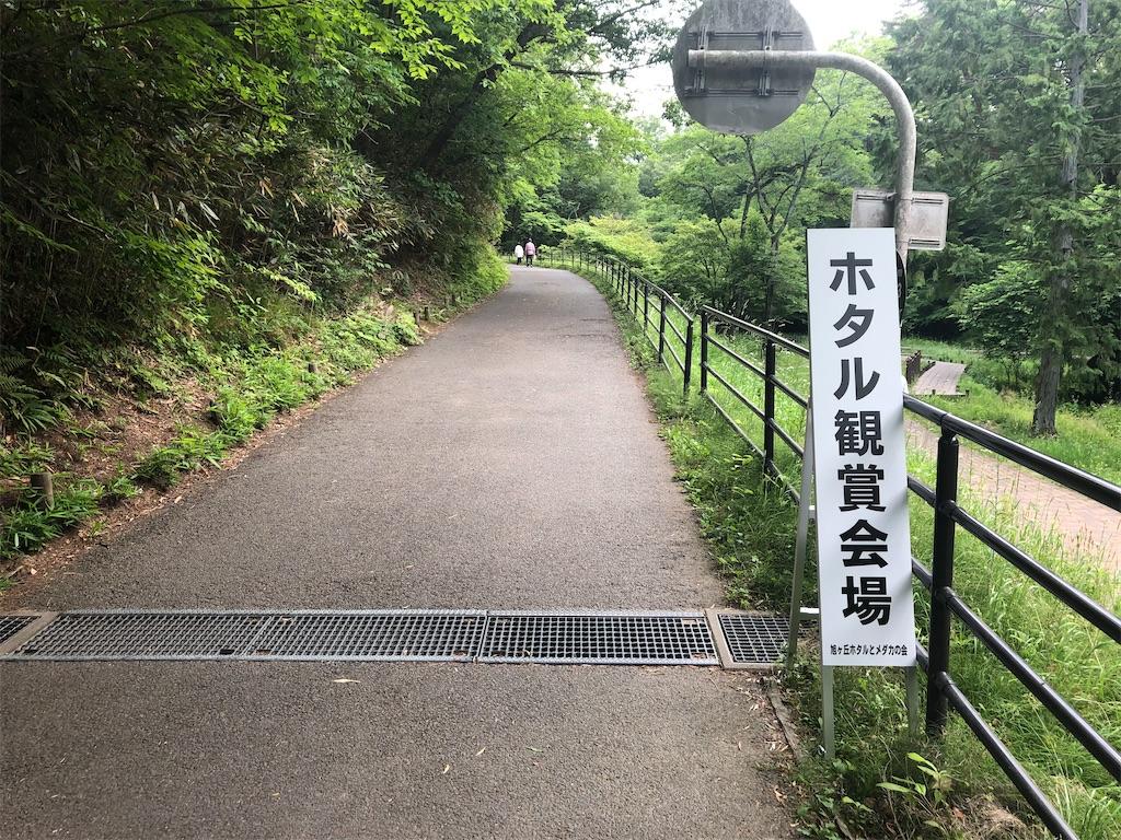 f:id:kenchan-run:20210613222229j:image