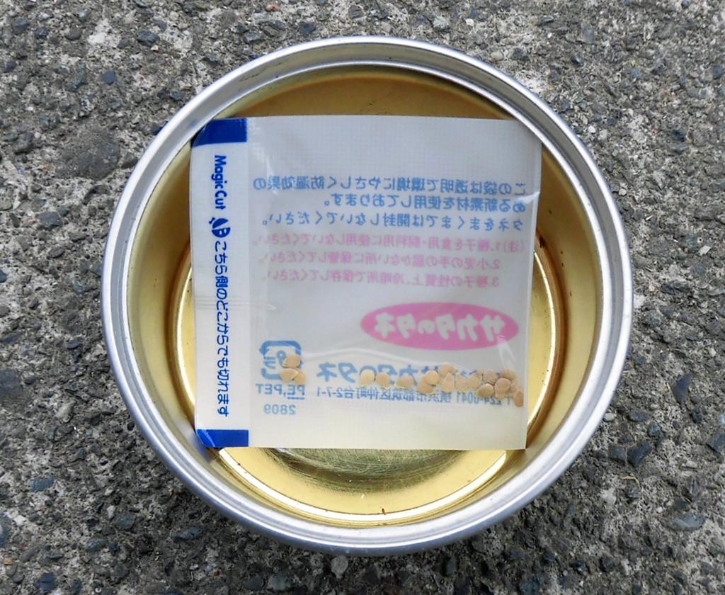 f:id:kenchan23:20180307114433j:plain