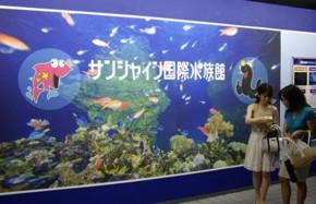 f:id:kenchi555:20090727221607j:image