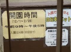 f:id:kenchi555:20100103222409j:image
