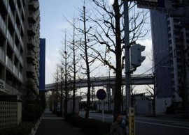 f:id:kenchi555:20100104123144j:image