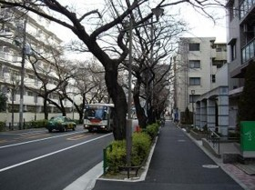 f:id:kenchi555:20100210051310j:image