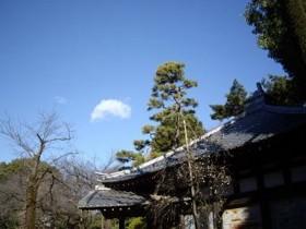 f:id:kenchi555:20100210062520j:image
