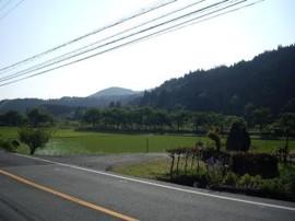 f:id:kenchi555:20100617210636j:image