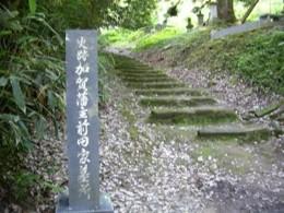 f:id:kenchi555:20100717063457j:image