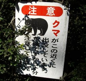 f:id:kenchi555:20100717064420j:image