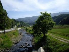 f:id:kenchi555:20100925164841j:image