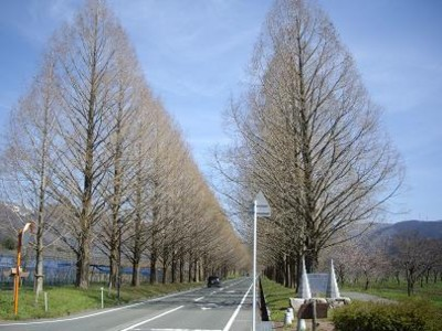 f:id:kenchi555:20110419211908j:image