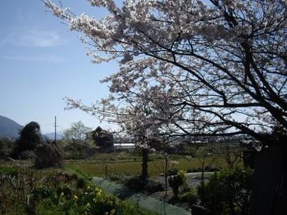 f:id:kenchi555:20110420051642j:image
