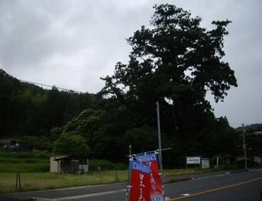 f:id:kenchi555:20110620071958j:image