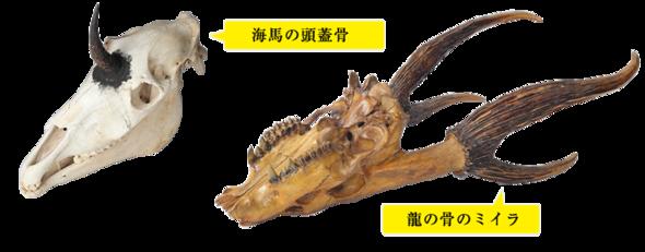 f:id:kenchi555:20141027190651p:image