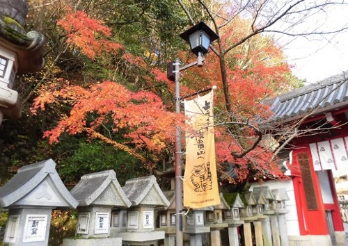 f:id:kenchi555:20151212151416j:image