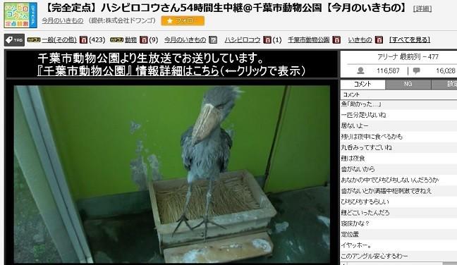 f:id:kenchi555:20170924172038j:plain