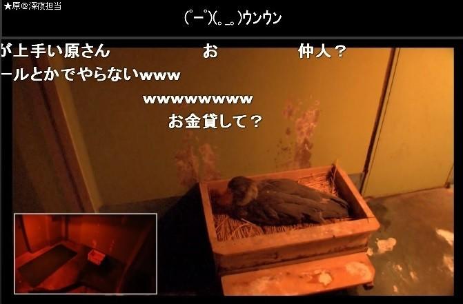 f:id:kenchi555:20170925060316j:plain
