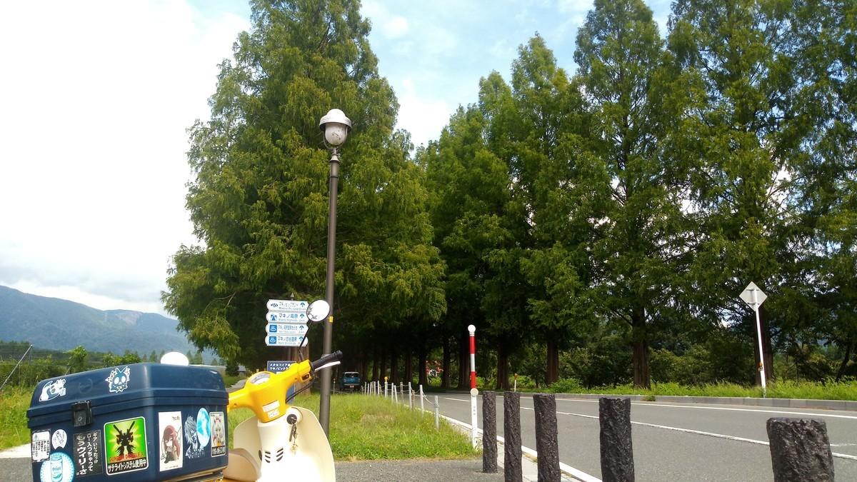 f:id:kenchi555:20200920110948j:plain