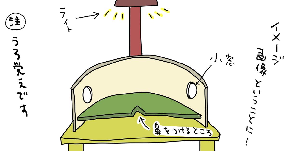 f:id:kenchuke0415:20190612145204p:plain