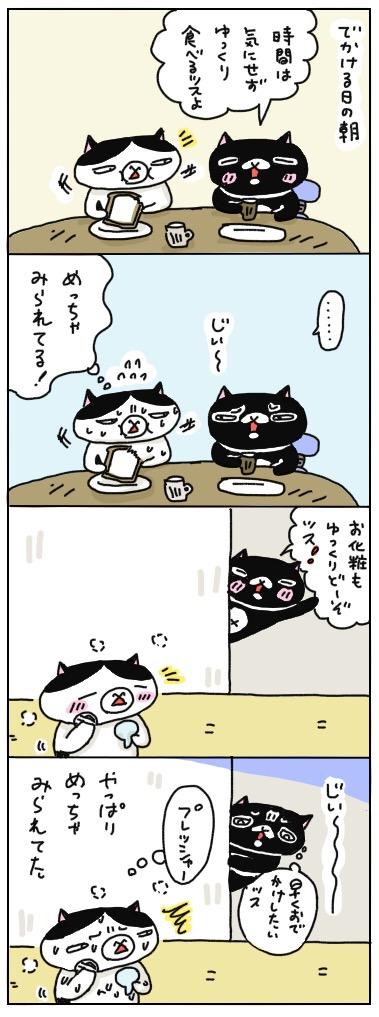 年の差猫夫婦マンガ