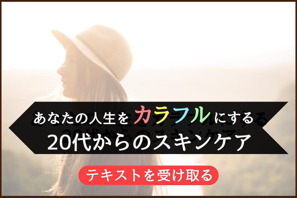 f:id:kengo6298:20210112171649j:plain