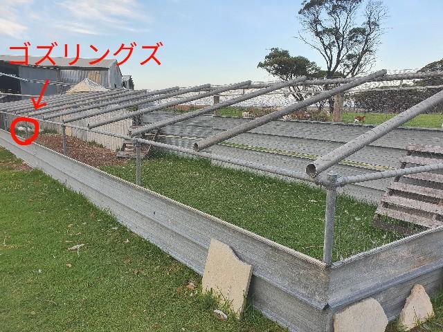 f:id:kengyonouka:20210322081055j:image