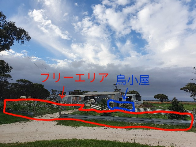 f:id:kengyonouka:20210405152454j:image