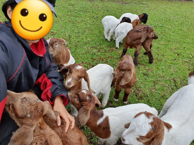 f:id:kengyonouka:20210419220415j:image