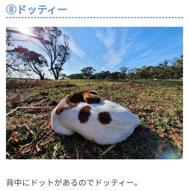 f:id:kengyonouka:20210420111340j:image