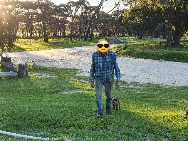 f:id:kengyonouka:20210506185249j:image