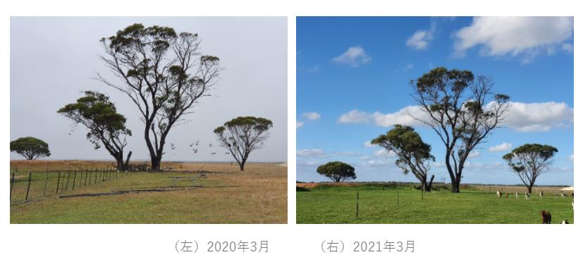f:id:kengyonouka:20210602204606p:plain
