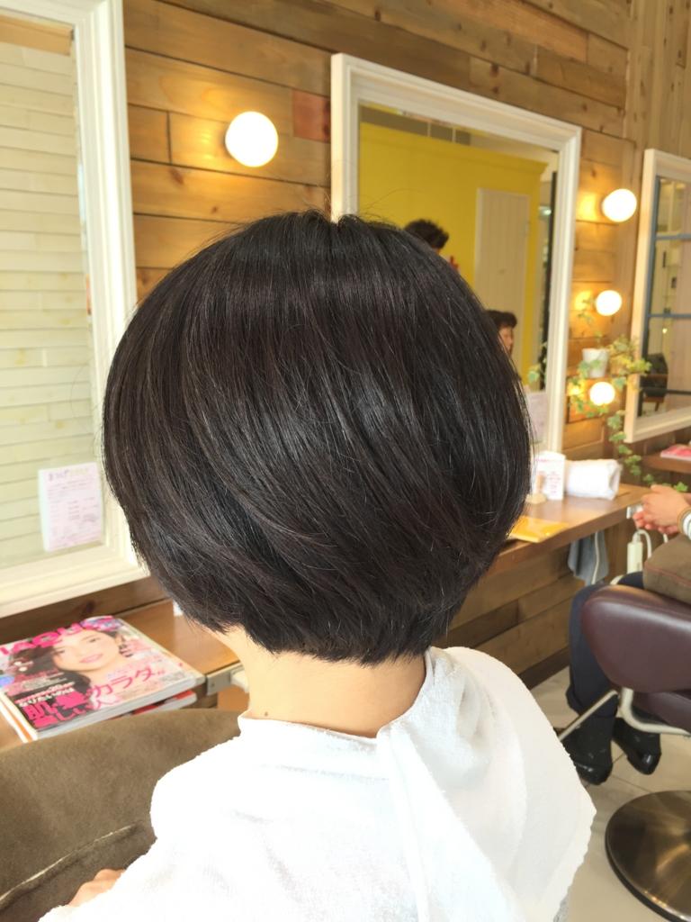 f:id:kenichi6282:20160318224503j:plain