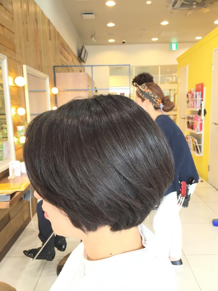 f:id:kenichi6282:20160318224530j:plain