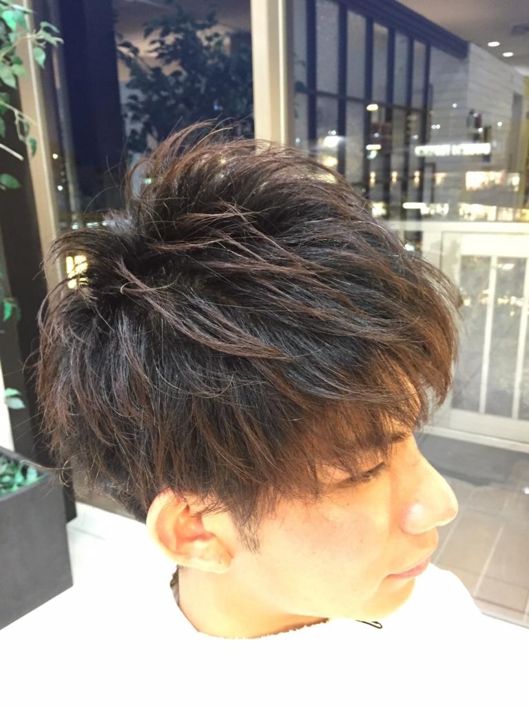 f:id:kenichi6282:20160329222027j:plain