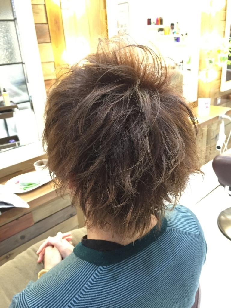 f:id:kenichi6282:20160405235115j:plain