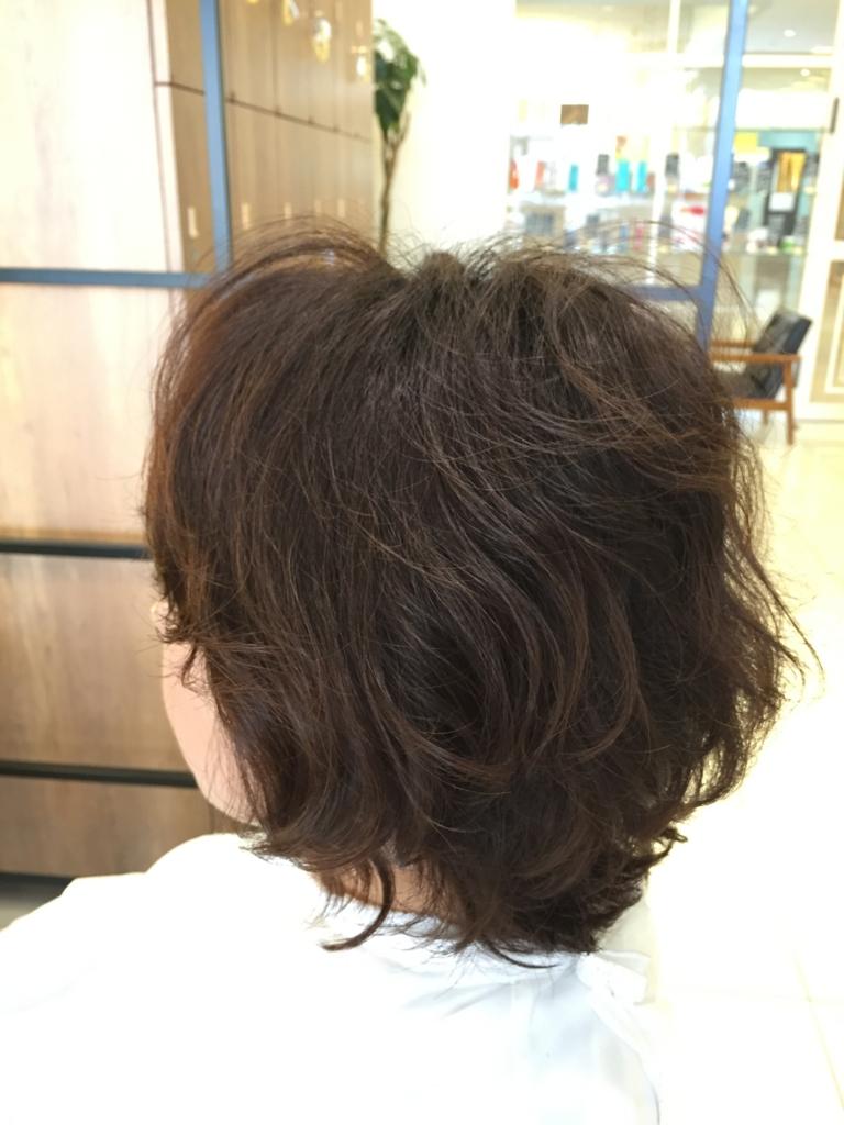 f:id:kenichi6282:20160423225919j:plain