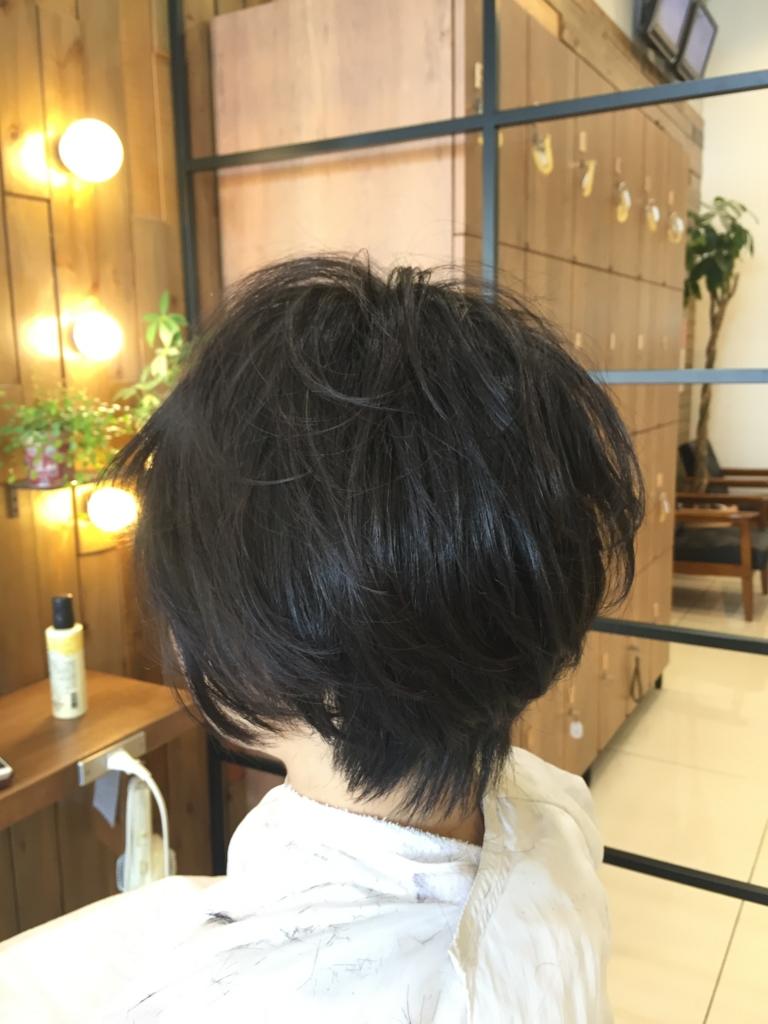 f:id:kenichi6282:20160603204131j:plain