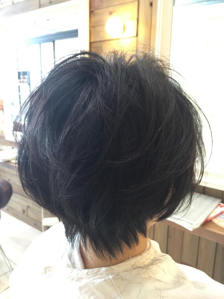 f:id:kenichi6282:20160603204321j:plain