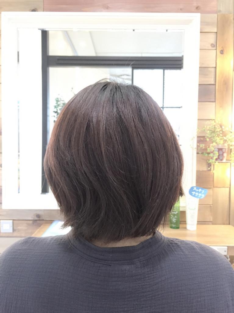 f:id:kenichi6282:20160705142112j:plain